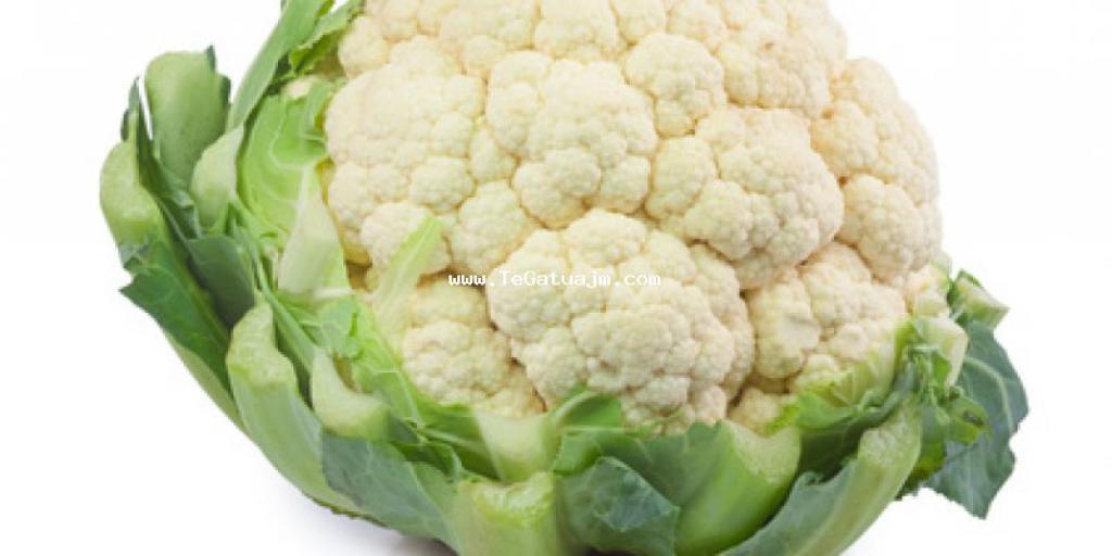 Keshilla per gatim: Si te kete shije akoma me te mire lulelakra?