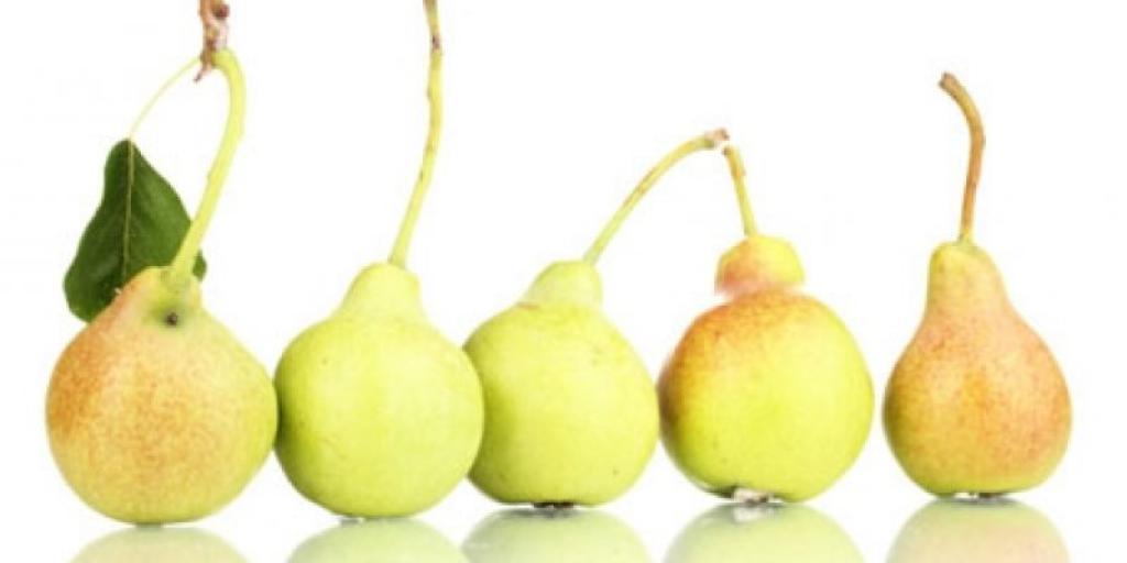 Dardha dhe dobitë shëndetësore të saj