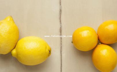 Dallimet në mes të limonave