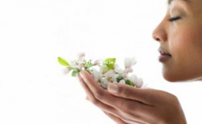 Aromat që mund t'iu bëjnë të lumtur
