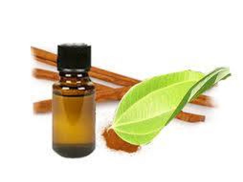 Dobitë e vajit të kanellës(Cinnamon Oil)